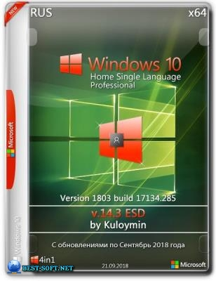 Windows 10 HSL/Pro 1803 x64 by kuloymin v14.3 (esd)
