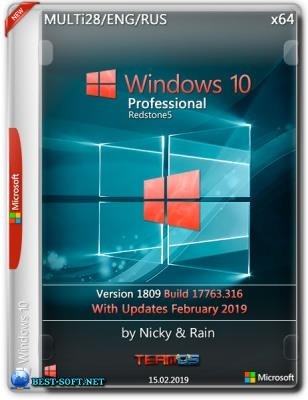 Windows 10 Pro x64 1809.17763.316 by Nicky & Rain